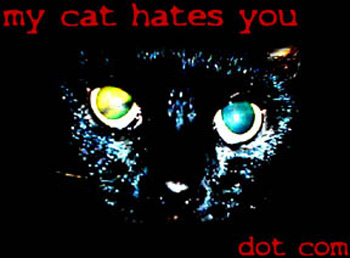 My Cat Hates You!